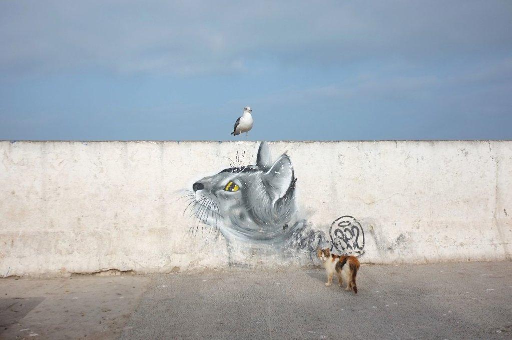 Series: animal. minimal.